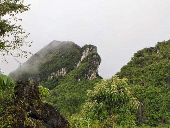 Toàn cảnh núi Hàm Rồng