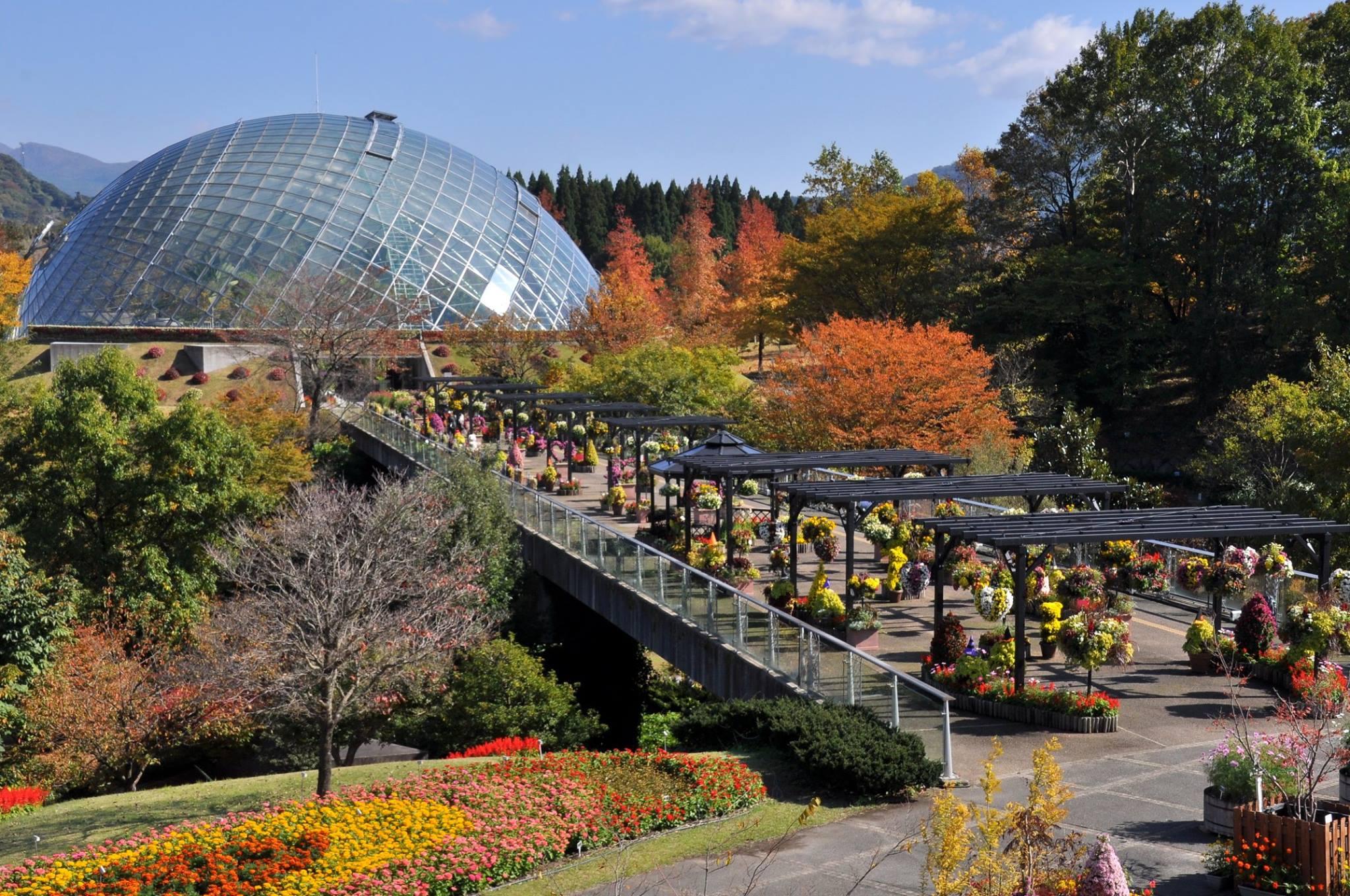 Tottori-Hanakairo-Flower-Park-Flower-Dome