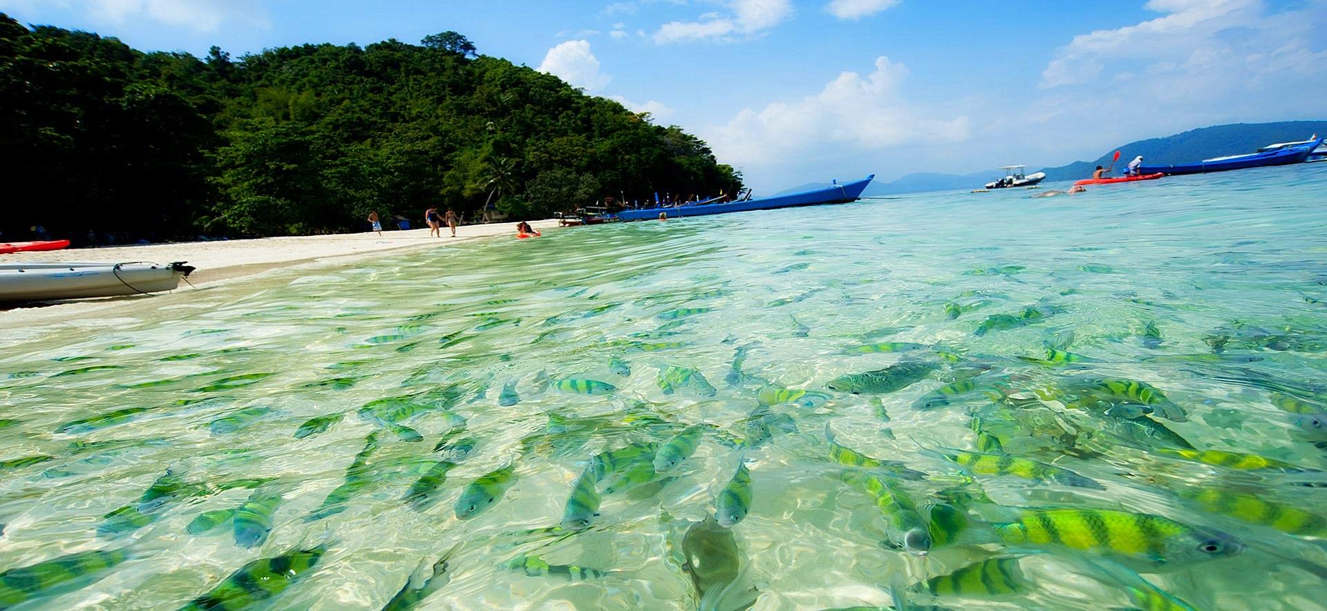 Đảo Coral trong tour du lịch thái lan