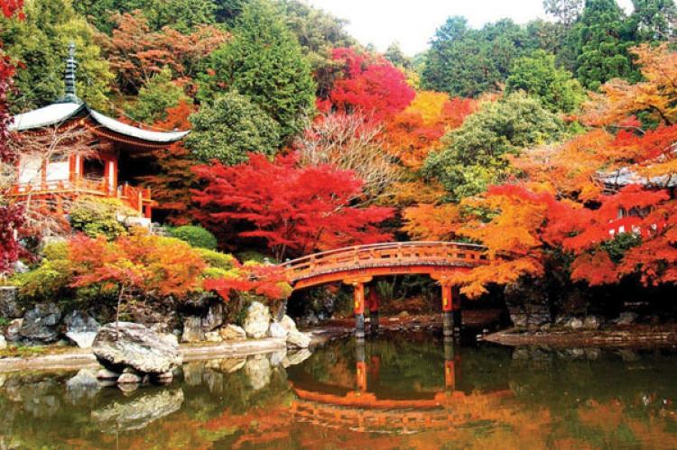 KYOTO du lịch Nhật Bản