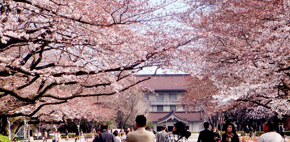 Công viên Ueno nhật bản