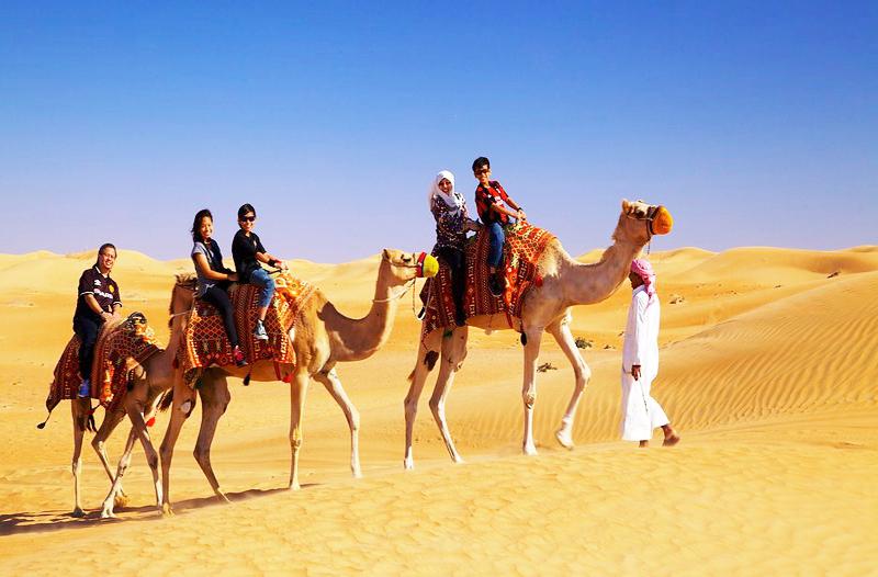Lạc đà nhồi thịt – khám phá du lịch Dubai