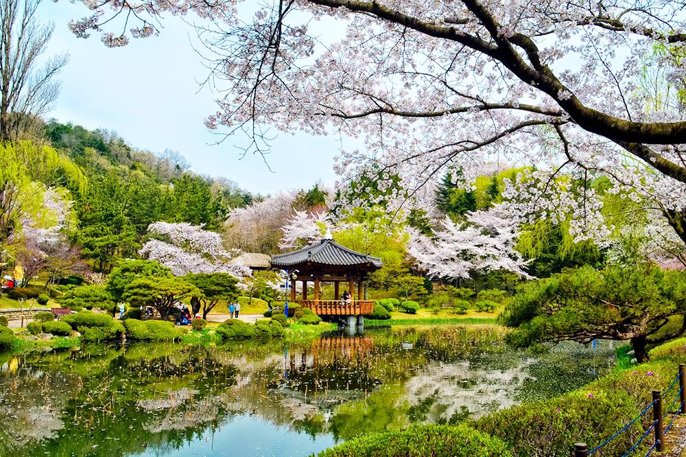 tour du lịch Hàn Quốc