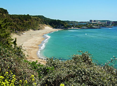 Bãi biển ở Jeju