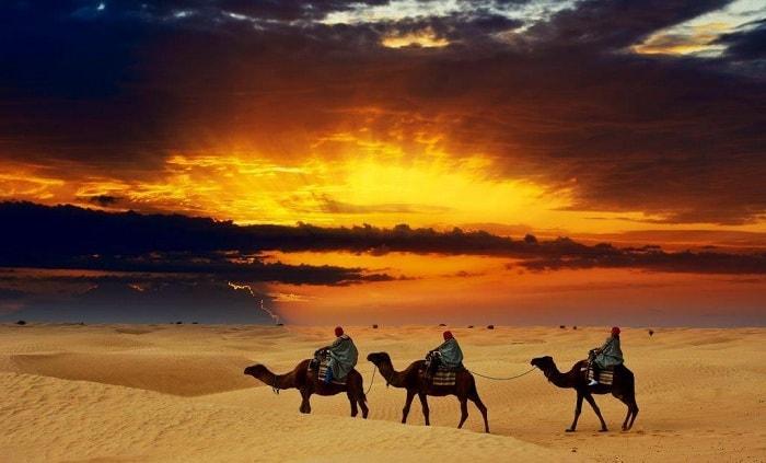 Safari Dubai-Khu bảo tồn sa mạc kỳ bí