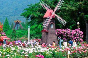 TỚI HÀN QUỐC LÀ PHẢI TỚI SEOUL GRAND PARK