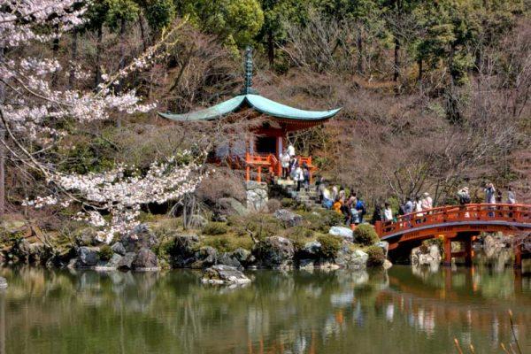 khám phá những ngôi chùa nổi tiếng tại nhật bản
