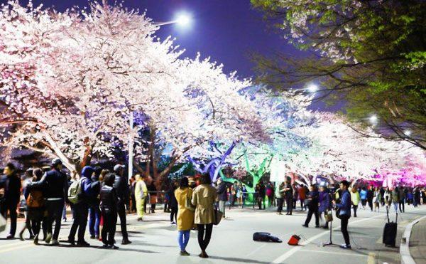7 lễ hội không thể bỏ qua tại Seoul