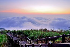 Cảm nhận về Cao nguyên Alishan Đài Loan qua lăng kính chủ quan!