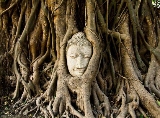 du lịch công viên lịch sử Ayutthaya