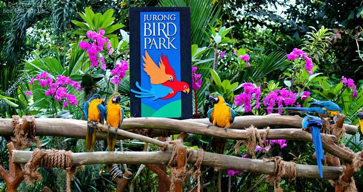 Công viên chim Kuala Lumpur, Malaysia