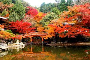 TỚI TOKYO THĂM NGÔI CHÙA DAIGO – JI ĐẸP HÚT HỒN