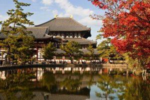 """Đi Du lịch Nhật bản 5 ngày 4 giá siêu """"hạt dẻ"""""""