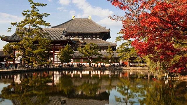 Khung cảnh của đền Đền Todaiji đẹp như tranh