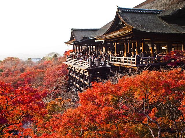 Du khách trong tour Nhật Bản sẽ được thăm chùa Thanh Thủy linh thiêng