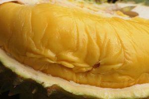 Top những loại trái cây nên thưởng thức khi đi du lịch Thái Lan