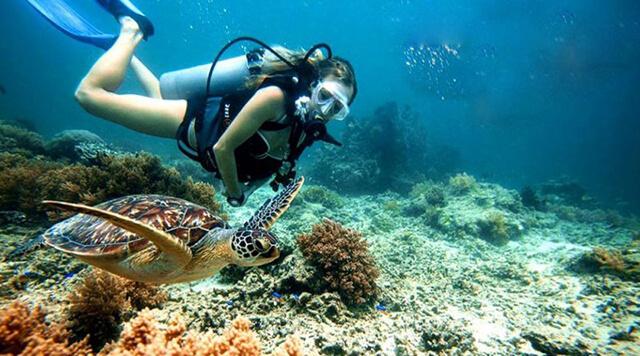 Đến với tour du lịch thái lan giá rẻ bạn còn  được tham gia rất nhiều hoạt động độc đáo như: dù lượn, lặn biển...