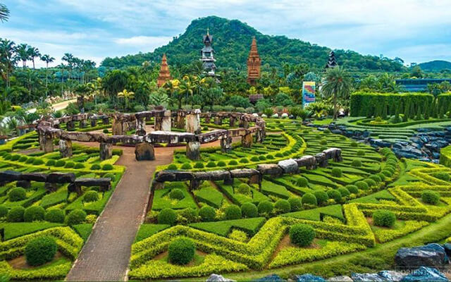 Vườn bướn Sathip vô cùng đẹp