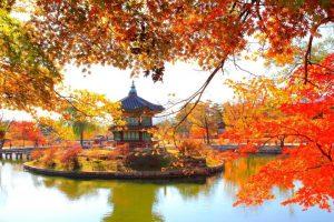 Tản mạn về những ngày lang thang du lịch Hàn Quốc