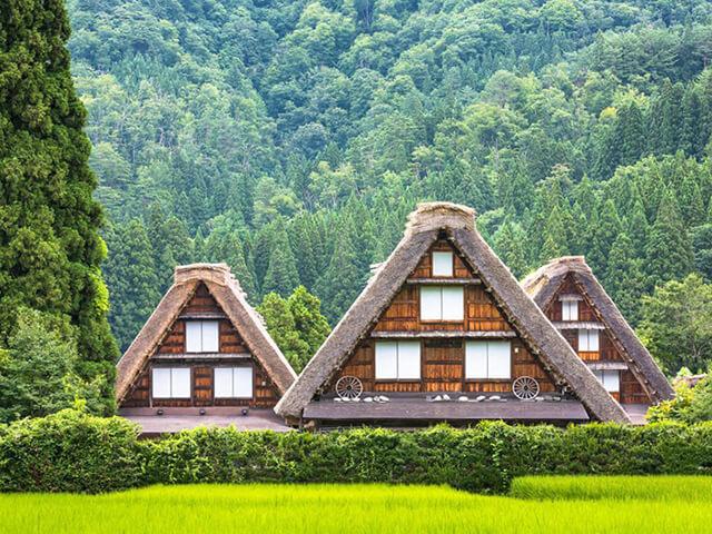 Vẻ đẹp xanh mướt, tràn đầy sức sống của làng cổ Shirakawago vào mùa xuân