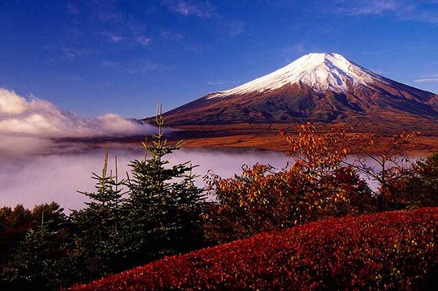 Núi Phú Sĩ không chỉ là biểu tượng của du lịch Nhật Bản mà còn là nguồn cảm hứng bất tận cho giới nghệ sĩ