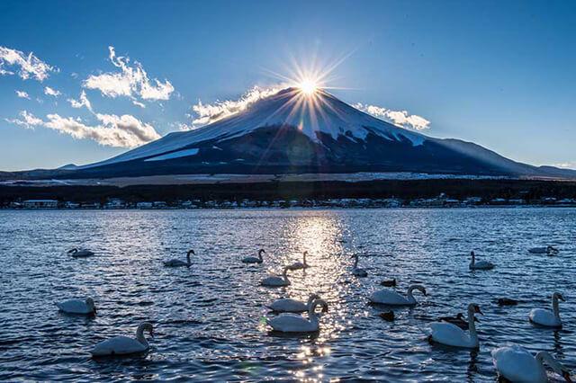 """Trong tour du lịch Nhật Bản vừa rồi tôi đã biết thêm ý nghĩa tên gọi của núi Phú Sĩ nghĩa là """"thổi bật ra"""""""