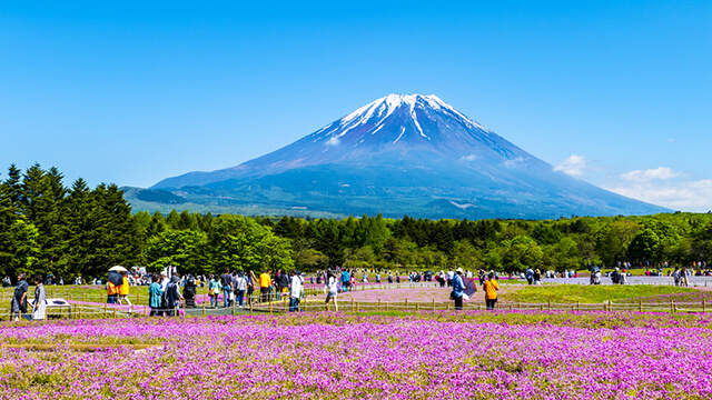 Vẻ đẹp núi Phú Sĩ vào mùa hè