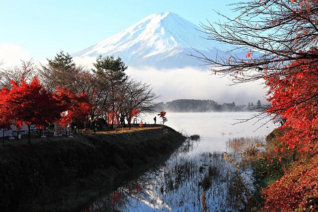 Bạn có thể dễ dàng nhìn thấy núi phú sĩ từ mọi địa điểm trong tour du lịch Nhật Bản