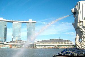 CÔNG VIÊN SƯ TỬ BIỂN – ĐIỂM HẸN HẤP DẪN TẠI SINGAPORE