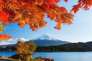 Để tour Nhật Bản trở nên dễ dàng và thuận tiện hơn, bạn nên tải về điện thoại một số ứng dụng phù hợp