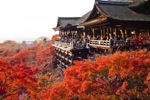 Du lịch chùa Kiyomizu Nhật Bản vào thời điểm nào?