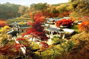 Đi du lịch Hàn Quốc 5 ngày 4 đêm tự túc cần chuẩn bị những gì cho chuyến đi?