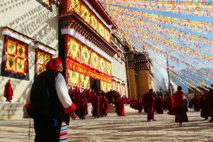 5 trải nghiệm khiến bạn muốn đi tour Lệ Giang Shangrila