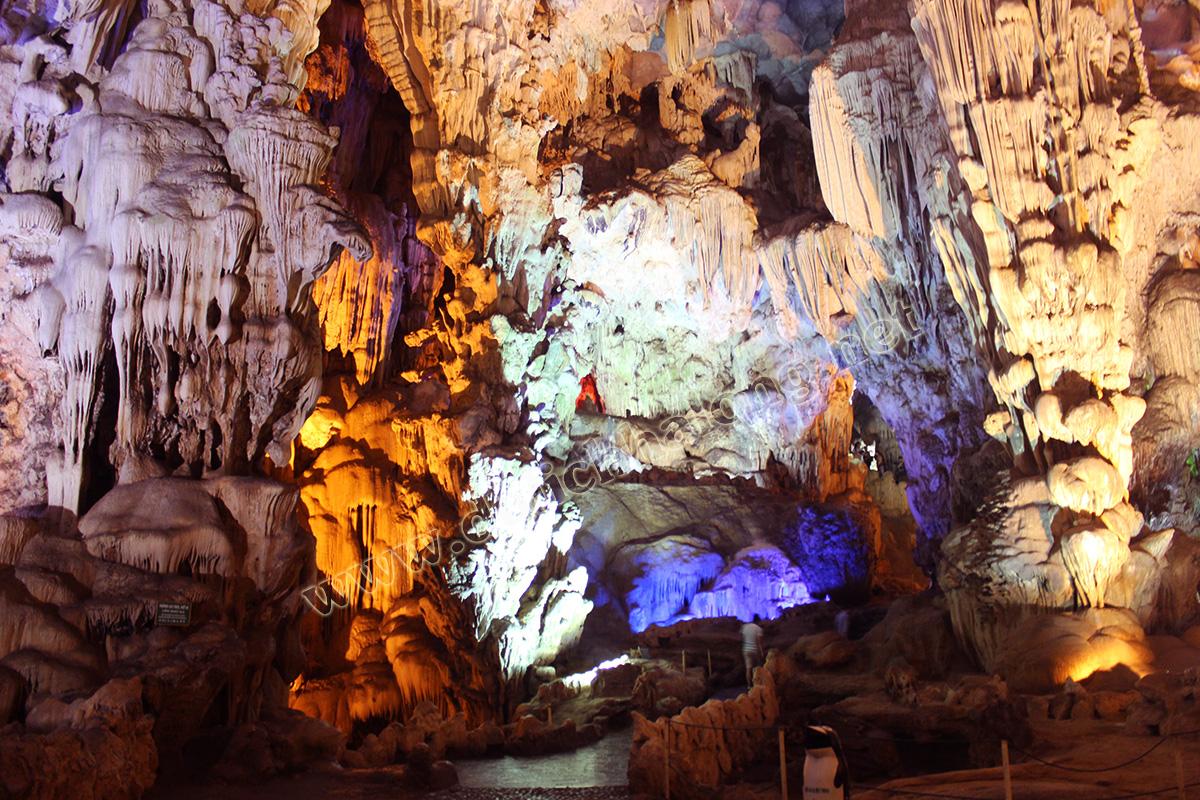 Động Thiên Cung ( Thien Cung Cave)