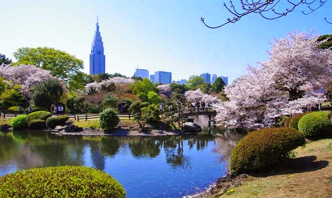 Công viên Shinjuku Gyoen, Nhật Bản