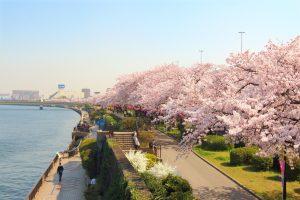 Khám phá 5 công viên yên bình tại Nhât Bản