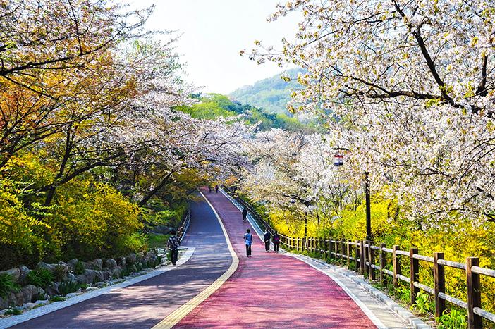 công viên Namsan