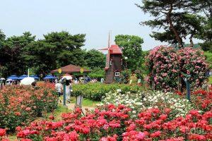 Những điểm du lịch đẹp nên check in ở Incheon, Hàn Quốc