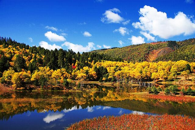 Sắc đỏ vàng của lá cây hòa với sắc xanh của mây trời và mặt nước khiến mùa thu là thời điểm cực kì tuyệt vời để du lịch Lệ Giang