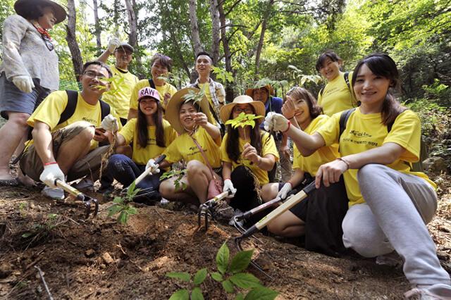 Núi Geumsan là mảnh đất nổi tiếng với việc trồng được những loại sâm hảo hạng cũng như là nơi tổ chức lễ hội sâm vô cùng quy mô