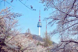 Biểu tưởng tình yêu của Hàn Quốc- núi Namsan
