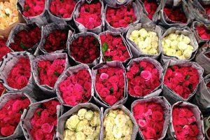 Khám phá chợ hoa Pak Klong Talad trong tour Thái Lan