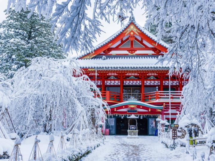 mùa đông Nara tuyệt đẹp