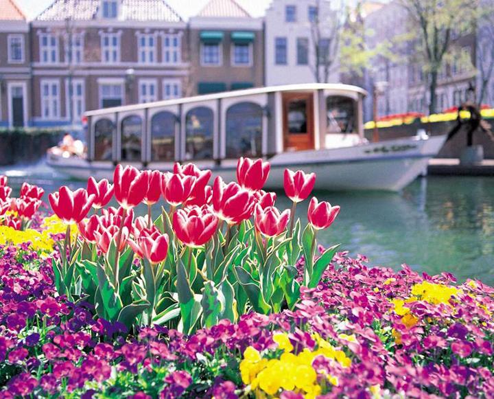 Công viên hoa Huis Ten Bosch Nhật Bản