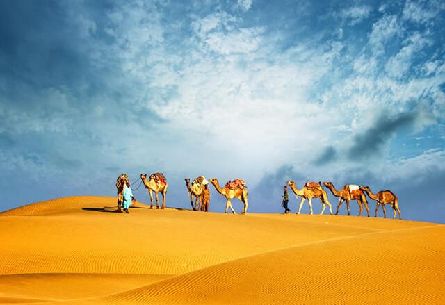 Có rất nhiều trải nghiệm thú vị tại sa mạc Sarafi đang chờ bạn khám phá trong tour du lịch Dubai