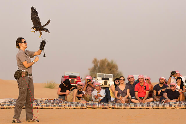 Chụp hình với những chú đại bàng sa mạc là hoạt động cực kì lì thú và nhiều cảm xúc