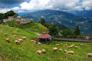 Những điểm du lịch hấp dẫn ở Nam Đầu Đài Loan