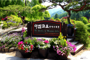 Vườn thực vật Moring Carlm có gì thú vị khi đi tour Hàn Quốc?