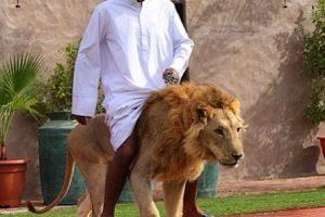 10 Sự thật thú vị chỉ có ở đất nước Dubai