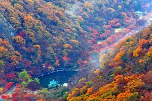 Top 5 Vườn Quốc Gia tuyệt đẹp cho tour du lịch Hàn Quốc tự túc